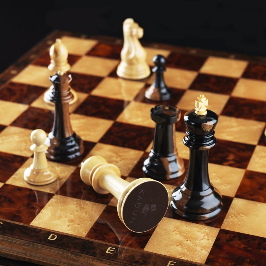 Смешные картинки в шахматах, родителям сентября картинки